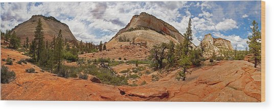 Zion Checkerboard Mesa And Hoodoos Wood Print by Gregory Scott