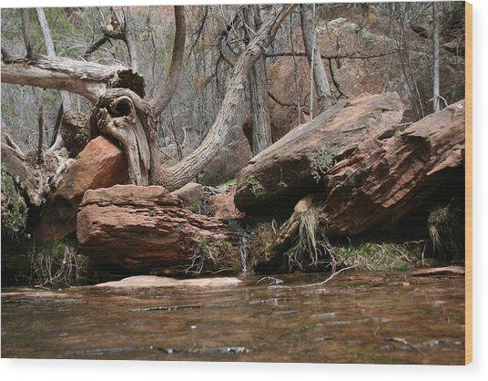 Zion Park Wood Print