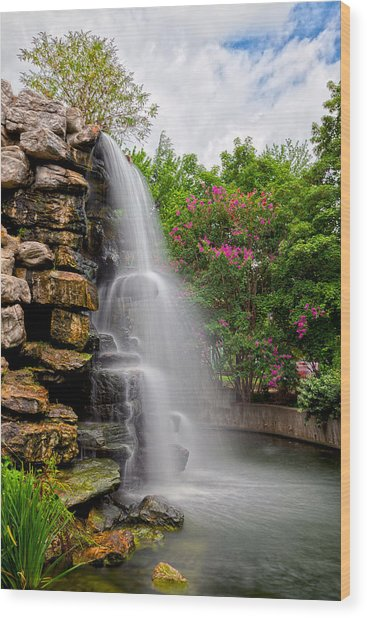 Zoo Waterfall Wood Print