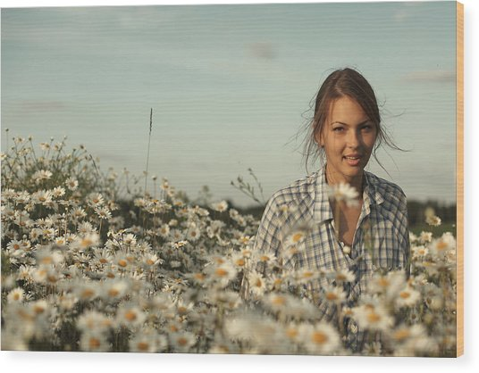 Chamomile Wood Print by Vadim Grabbe