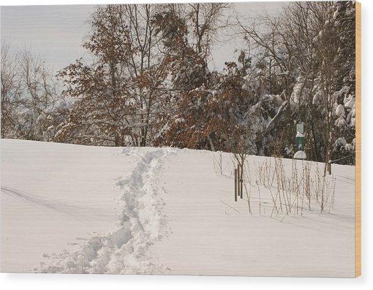Christmas Snow Trail Wood Print
