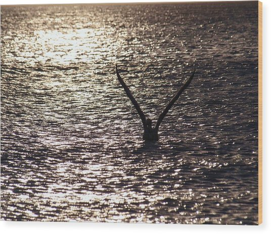 Dancing With The Wind On A Sparkling Water Wood Print