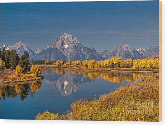 Fall Colors At Oxbow Bend In Grand Teton National Park Wood Print