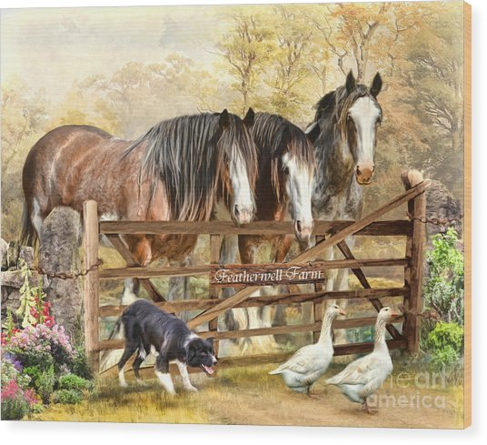 Featherwell Farm Wood Print
