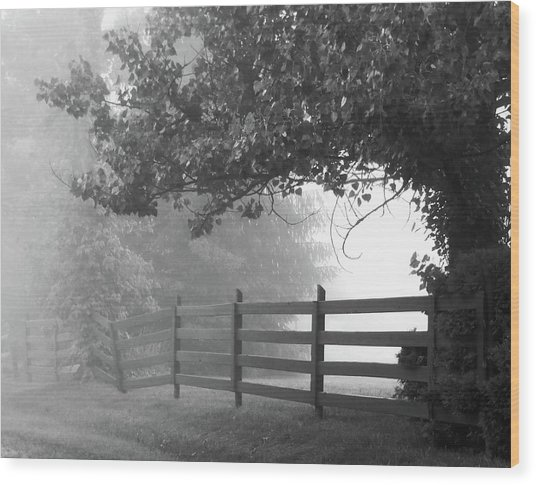 Fog At Dawn Wood Print