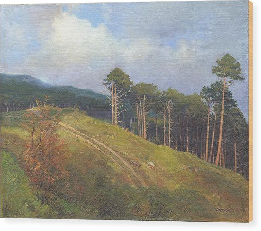 In The Crimean Mountains   Wood Print