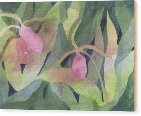 Wood Print featuring the painting  Ladyslipper by Jane Croteau