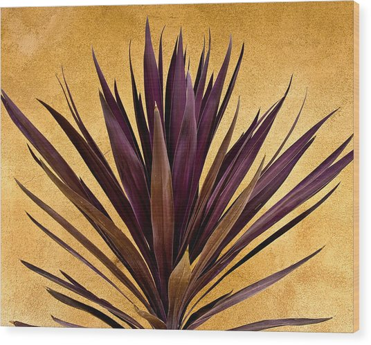 Purple Giant Dracaena Santa Fe Wood Print