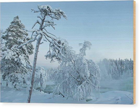 Magic Blue  Storforsen Waterfall  Wood Print