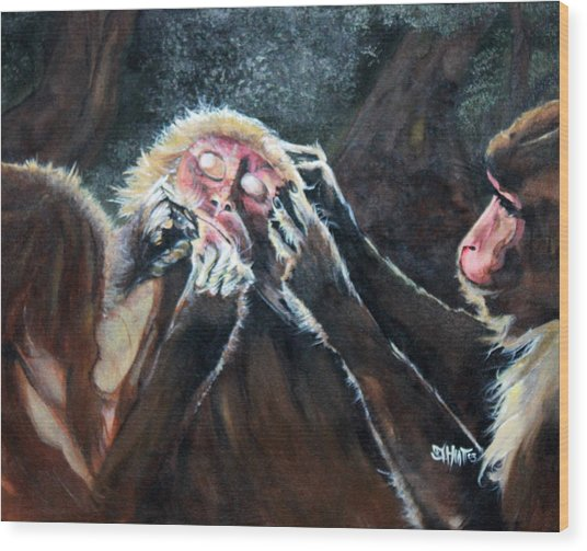 Three Monkeys Wood Print
