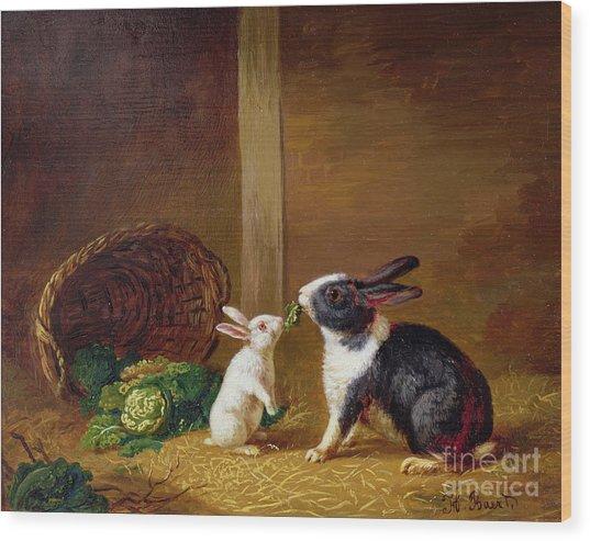 Two Rabbits Wood Print