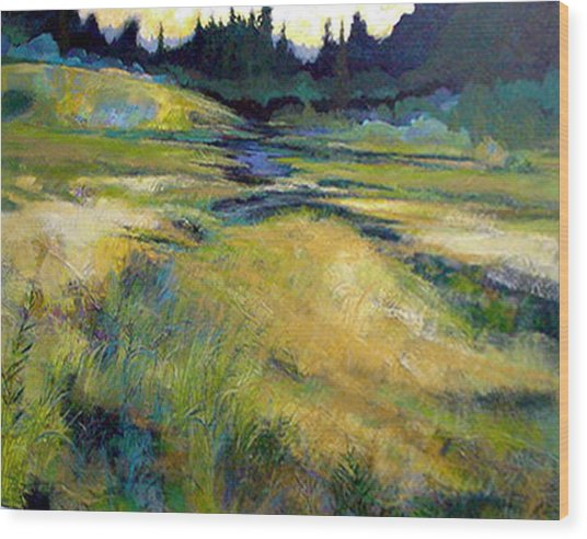 Water Source Wood Print by Dale  Witherow