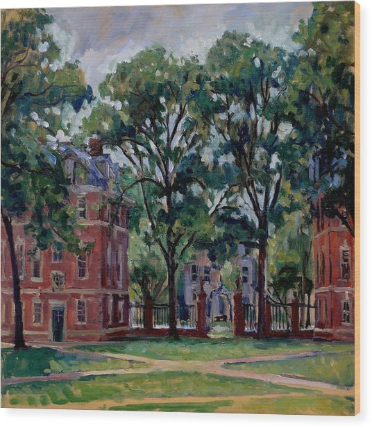 Williams College Quad Wood Print