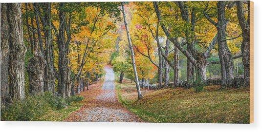 #0119 - New Hampshire Wood Print