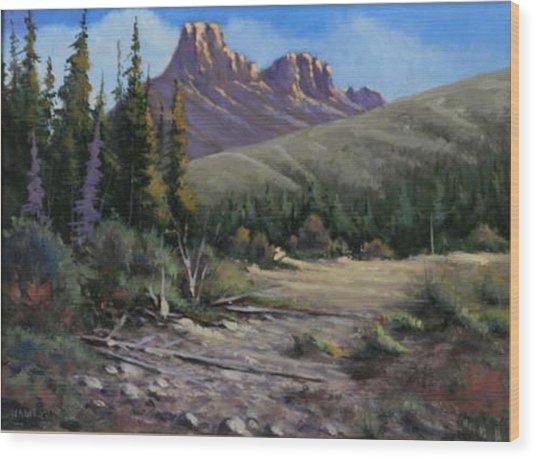 040610-912 Horse Thief Creek Wood Print by Kenneth Shanika