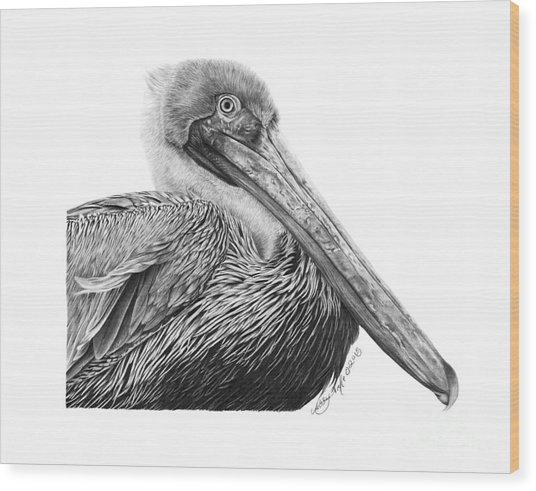 047 - Sinbad The Pelican Wood Print