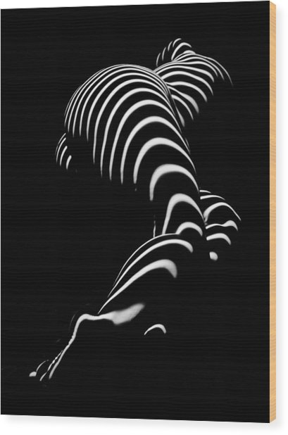 0774-ar Zebra Striped Figure Of A Large Woman Fine Art Photograph By Chris Maher Wood Print