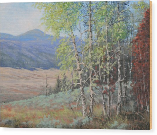 090925-68   The Peak Of Summer Wood Print by Kenneth Shanika
