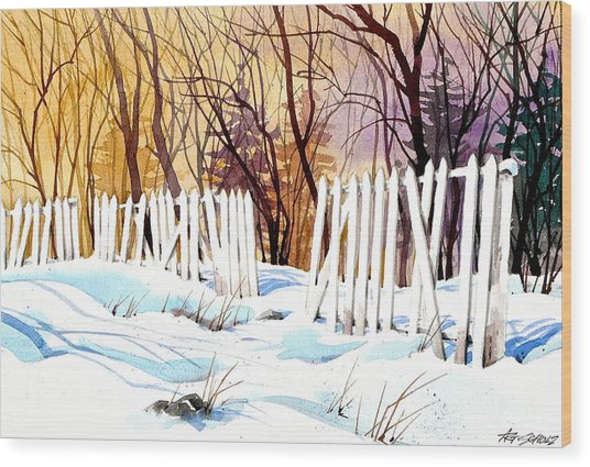 Fenced In Frost Wood Print by Art Scholz