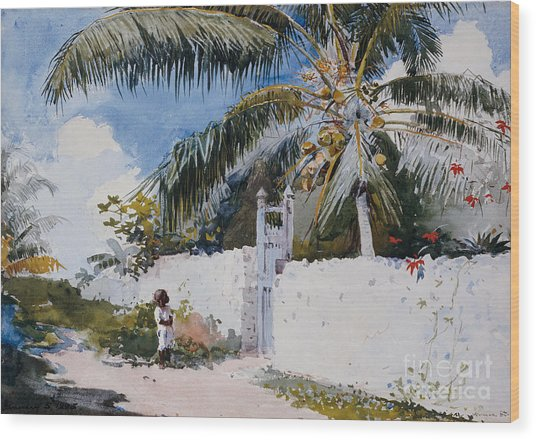 A Garden In Nassau Wood Print