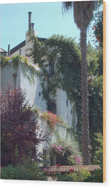 A Home In Rehavia 1 Wood Print by Susan Heller