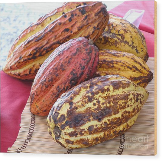 A Pile Of Cacao Pods Wood Print