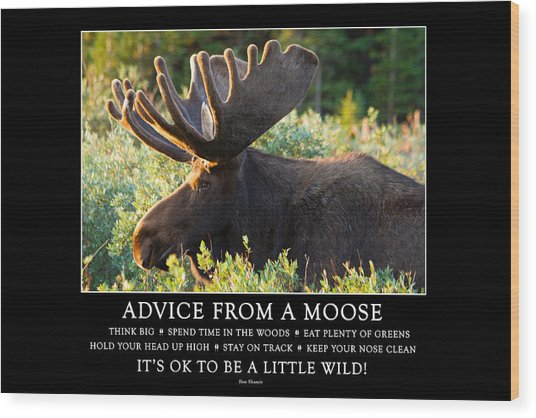 Advice From A Moose Wood Print