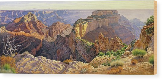 Afternoon-north Rim Wood Print
