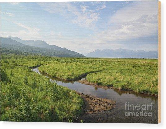 Alaskan Valley Wood Print