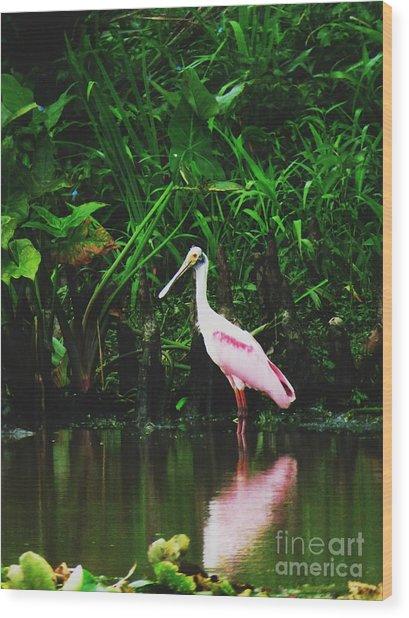 Along A River Road Wood Print by Deborah Chase