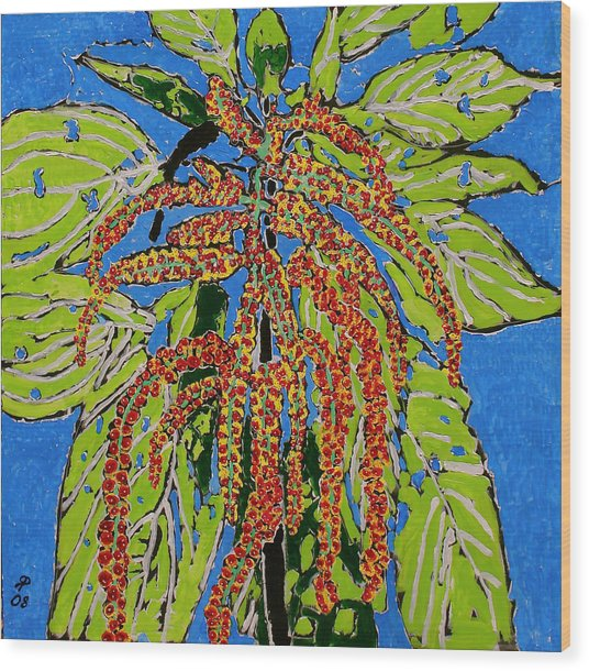 Amaranthus Sold Wood Print by Ray  Petersen