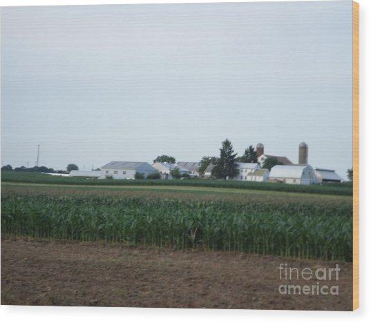 Amish Homestead 9 Wood Print
