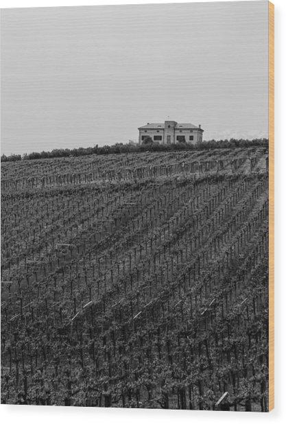 An Italian Farm In Abruzzo Wood Print