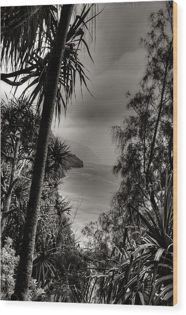 Ancient Kauai Wood Print