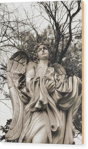 Angel In The Fall Wood Print