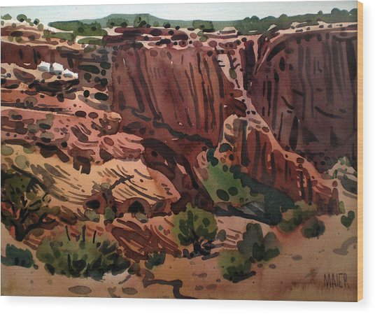 Antelope House Overlook 2003 Wood Print by Donald Maier