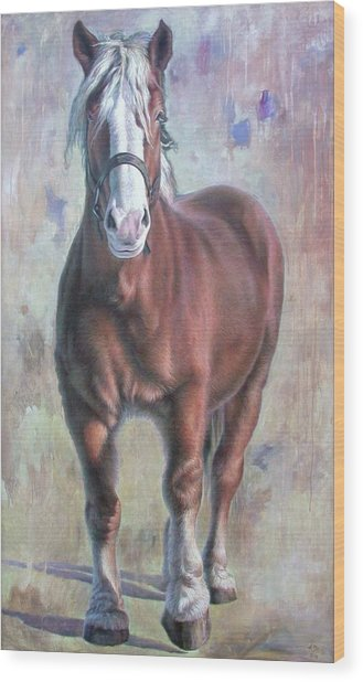 Arthur The Belgian Horse Wood Print