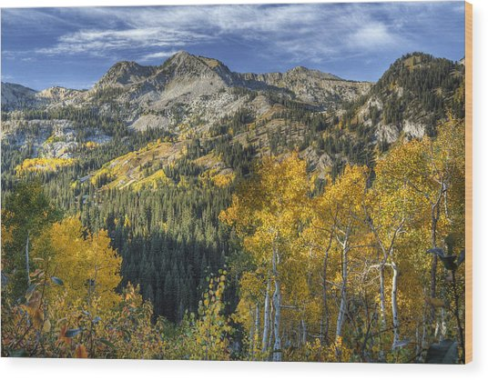 Autumn Colors In The Wasatch Mountains Wood Print
