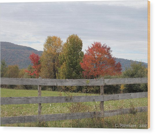 Autumn On Point Mountain Wood Print