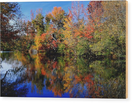 Autumn Pond Wood Print by Gary Bydlo