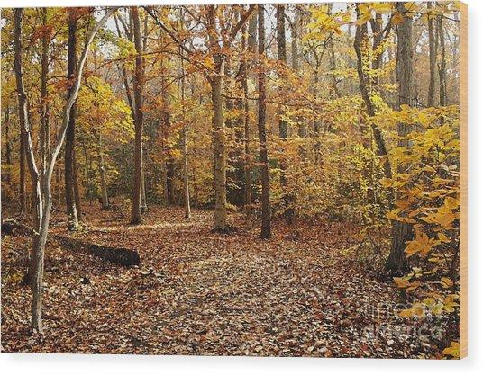 Autumn Scenery 2 Wood Print by Hideaki Sakurai