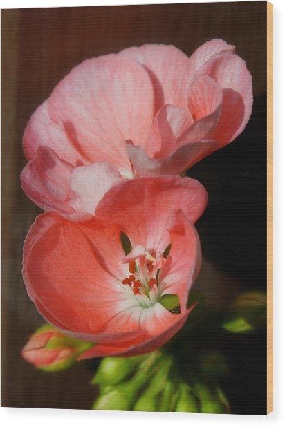 Backyard Flowers Wood Print by Art Tilley