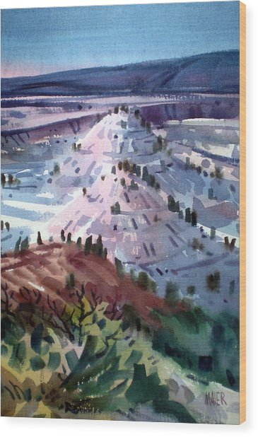 Badlands South Dakota Wood Print by Donald Maier