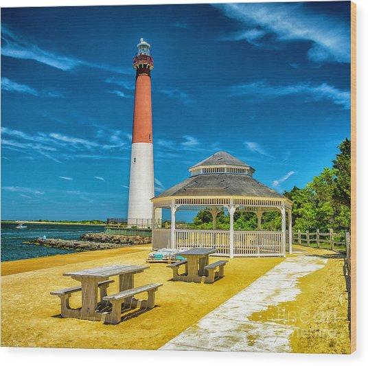 Barnegat Lighthouse Park Wood Print