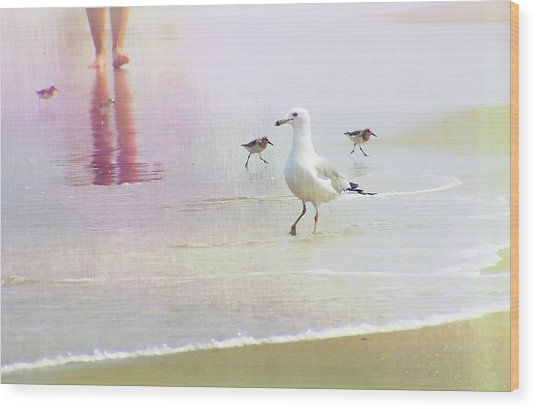 Beach Walk Wood Print by JAMART Photography