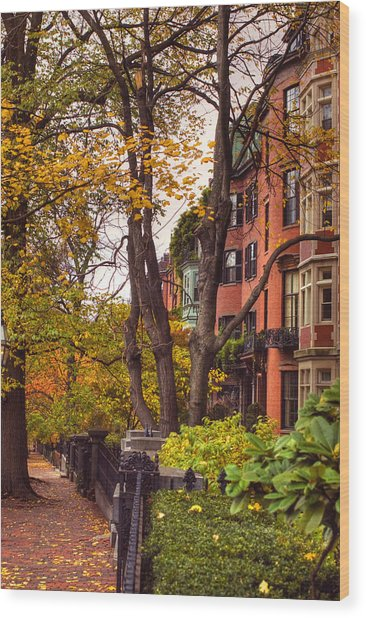 Beacon Hill Wood Print by Joann Vitali