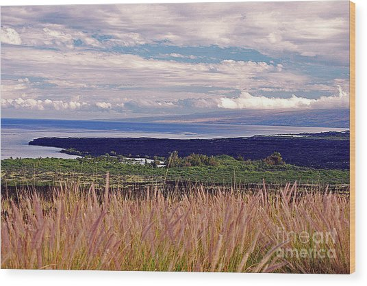 Big Island Landscape 1 Wood Print