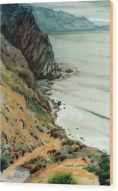 Big Sur California Wood Print by Donald Maier