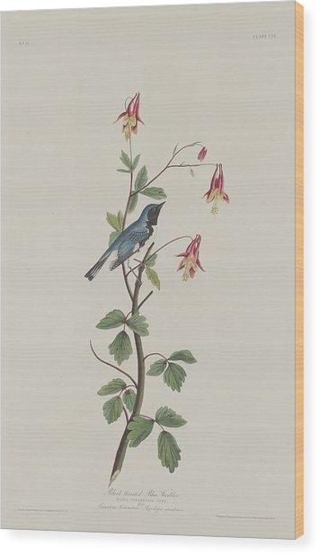 Black-throated Blue Warbler Wood Print