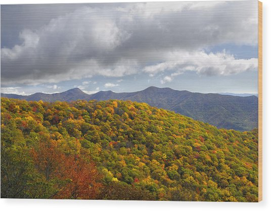 Blue Ridge Mountains In Autumn Color Wood Print by Darrell Young